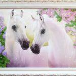 Cavalli innamorati